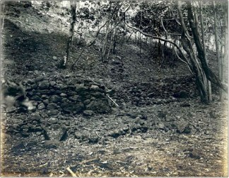 Ruins of Ancient Loi Kalo (Taro Pond Fields in Lanai)-(lanaichc-org)-1912