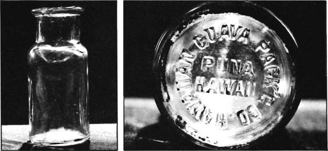 Rycroft guava jar-CTAHR