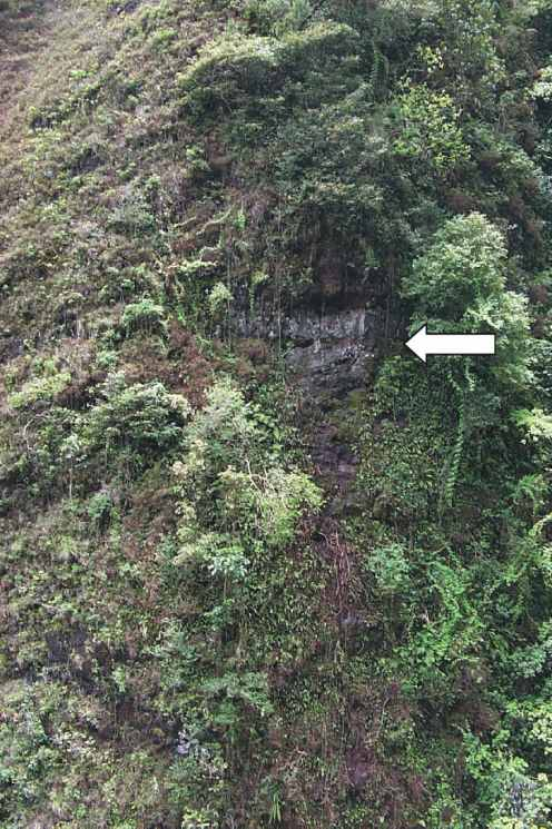 Source area (indicated by arrow) of Sacred Falls rock fall (USGS)