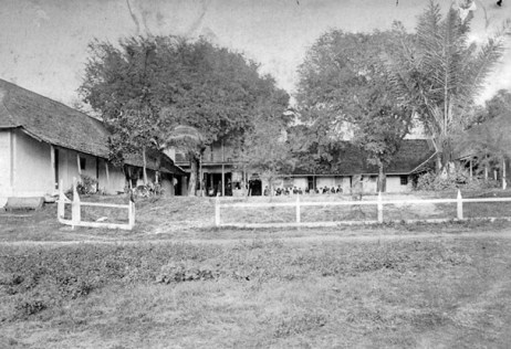 Tamarind tree on left, at School's first building, which was shaped like an 'E'-Punahou