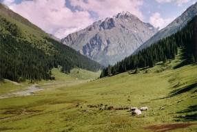 The Arashan Valley in the Terskey Alatau