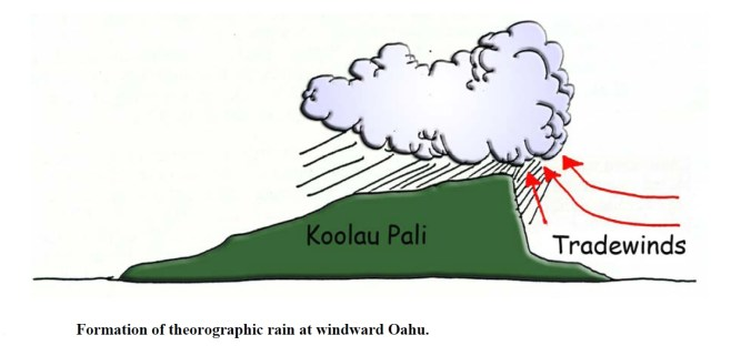 Tradewinds and the Koolau-Jokiel