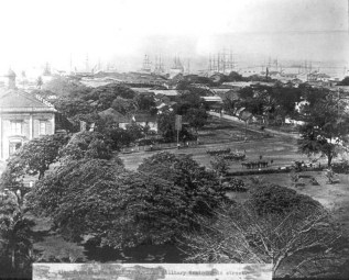 View_from_Iolani_Palace,_c._1895