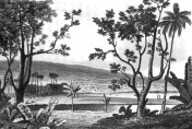 Waiakea_Mission_1825