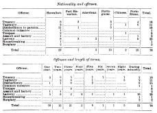 Waialeʻe Industrial School For Boys-Nationality-Offenses-Length_of_Terms-1903