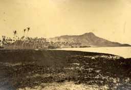 Waikiki_and_Helumoa_Coconut-(from_Ewa_end_of_Helumoa)-1870
