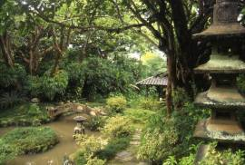 Walker_Estate-Japanese-Garden-(historichawaiifoundation)