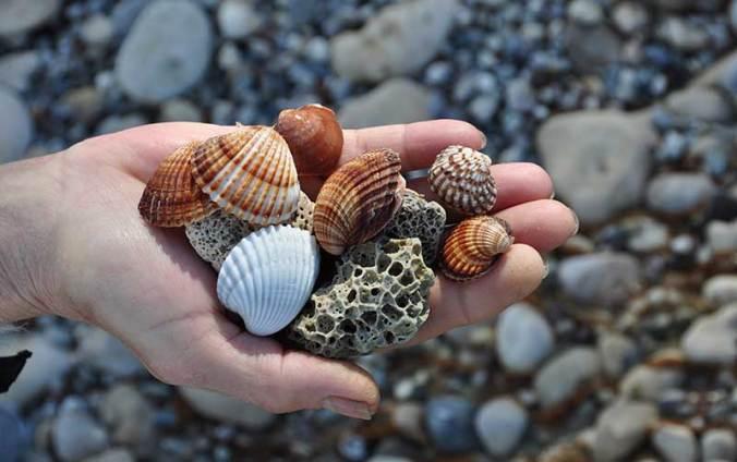 beachcombers-GlassingMagazine