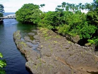 maui-canoe-hilo-donnie-macgowan
