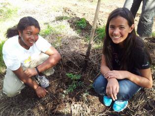 planting-partners-HFI