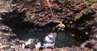 pohoiki-warm pond