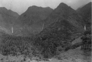 Waterfalls-back of Manoa-BM