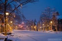 Snow Morning In Estes Park Colorado