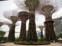 Metal trees, Singapore