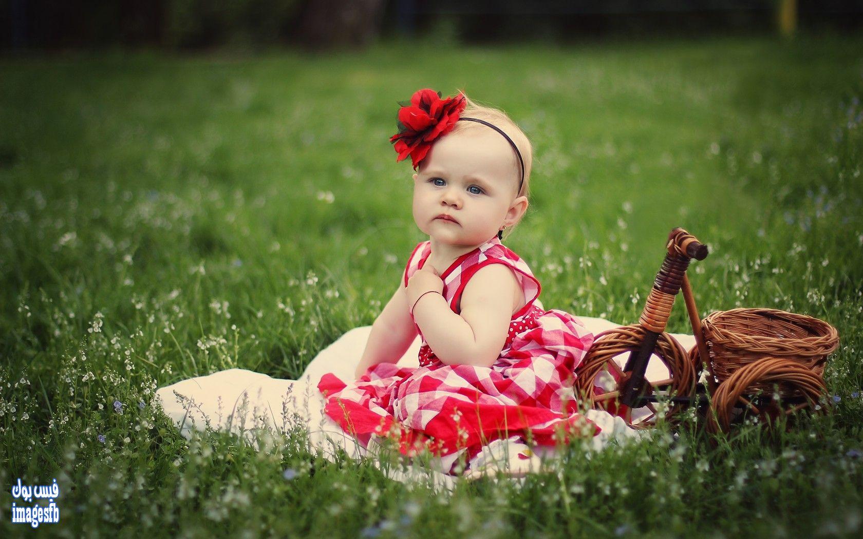 Baby Animals Hd Wallpapers اجمل واروع صور اطفال صور اطفال كيوت حول العالم امجز