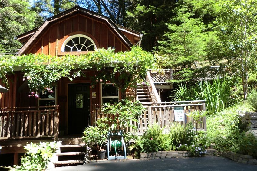 Relax in the Quiet Redwoods Close to Town and Beaches 1