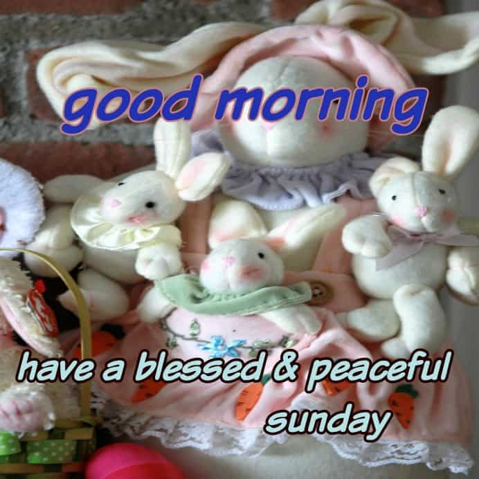 beautiful doll with have a blessed and peaceful Sunday