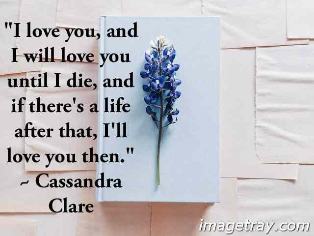 i love you until die