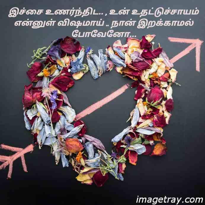 best WhatsApp DP images