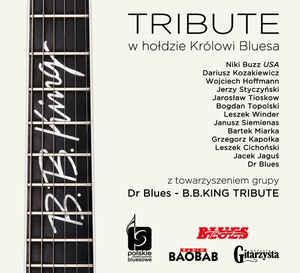 Dr Blues - B.B. King Tribute W Holdzie Krolowi Bluesa (2015) [FLAC] Download
