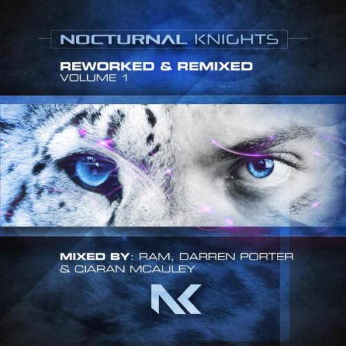 VA - Nocturnal Knights Reworked & Remixed Volume 1 (2020) [FLAC] Download