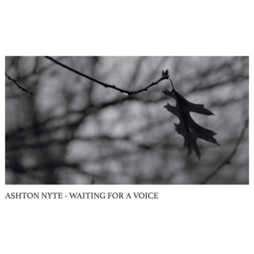 Ashton Nyte - Waiting For A Voice (2020) [FLAC] Download
