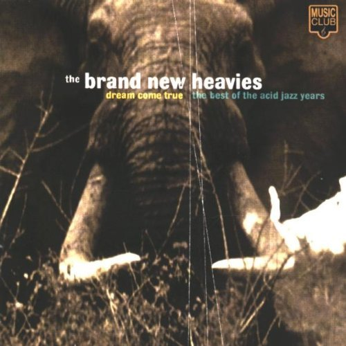 The Brand New Heavies - Dream Come True: The Best Of The Acid Jazz Years (1998) [FLAC] Download