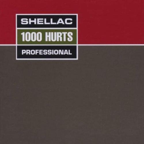 Shellac - 1000 Hurts (2017) [FLAC] Download