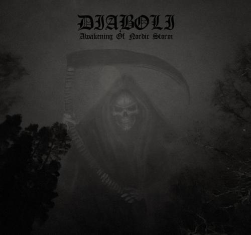 Diaboli - Awakening of Nordic Storm (2021) [FLAC] Download