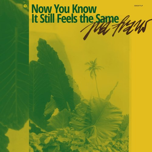 Pia Fraus - Now You Know It Still Feels The Same (2021) [FLAC] Download