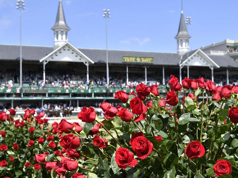 The Kentucky Derby is affectionately known as 'the Run for the Roses'.