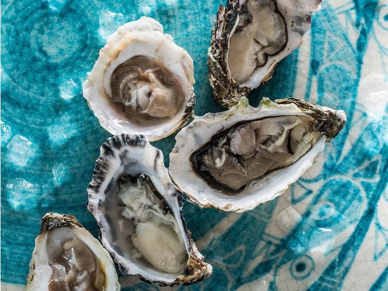 Alici Oyster