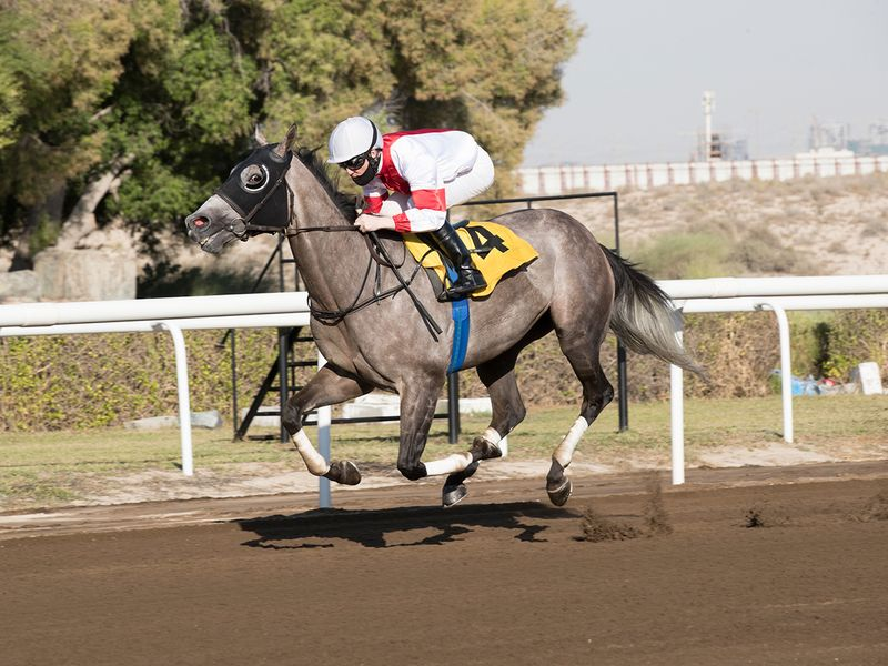 Pat Cosgrave and Mystery Land secured the feature race at Jebel Ali
