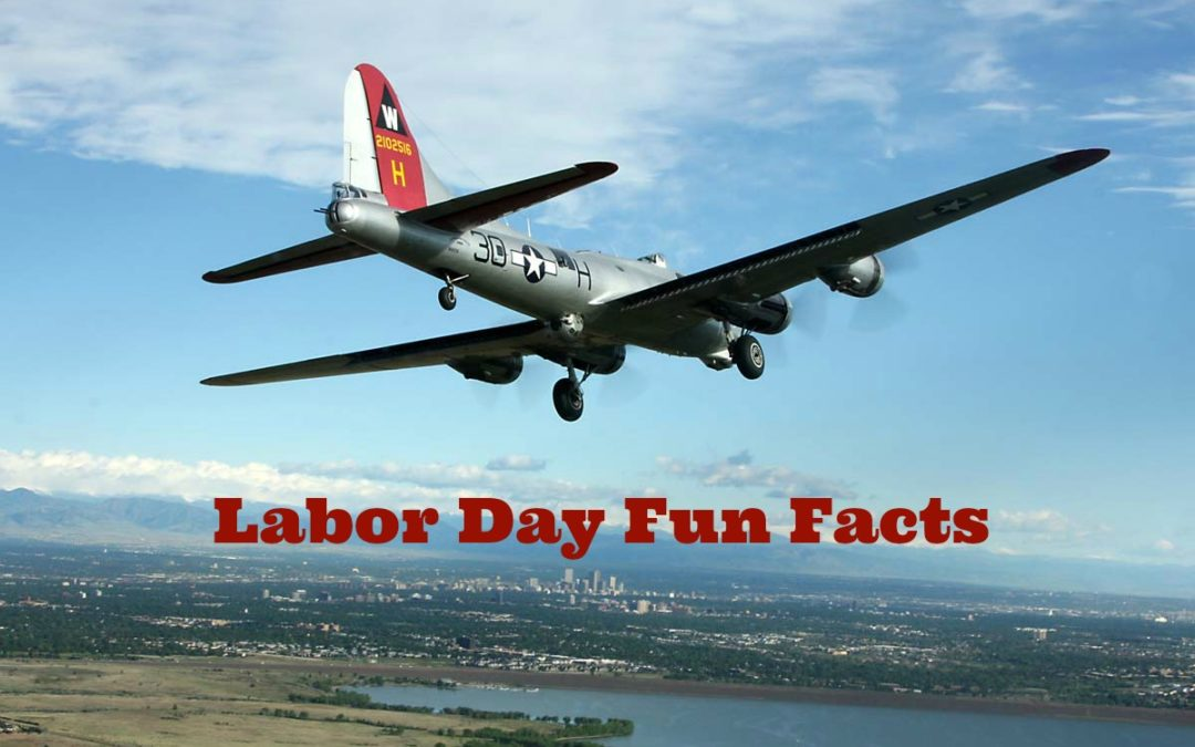 fun facts about labor