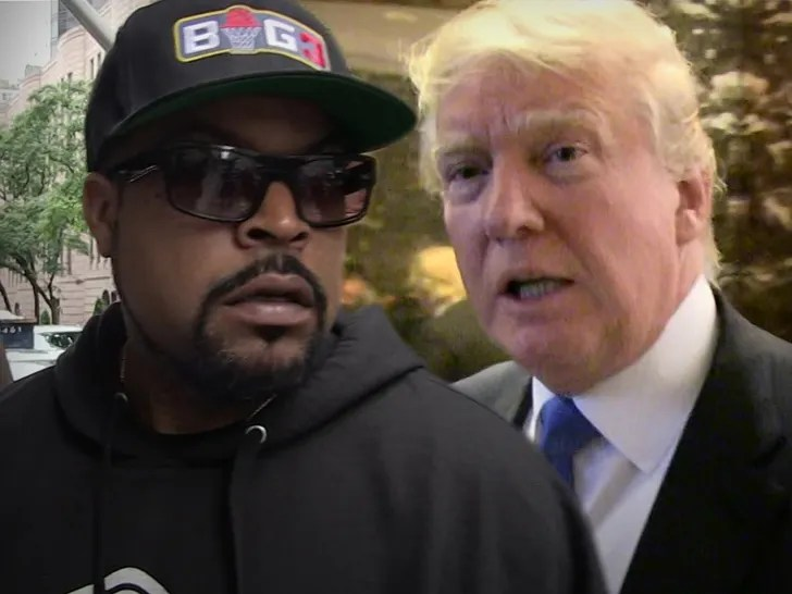 The WAP is ok but Ice Cube is a Sellout? I don't think so!