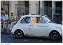 Cinquecento in the Italian South