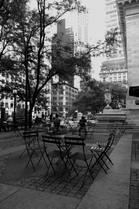 New York Public Library #06