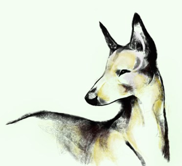 Imaginary Karin - pharaoh's hound