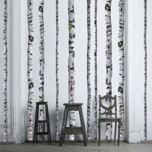 https://www.etsy.com/listing/123638995/super-real-birch-trees-wall-decals-9-ft