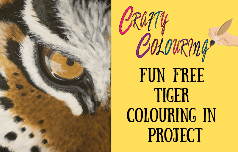 Fun Free Tiger Colouring in Project