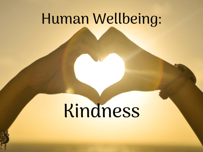 Human-Well-Being-by-Barry-S-Brunswick