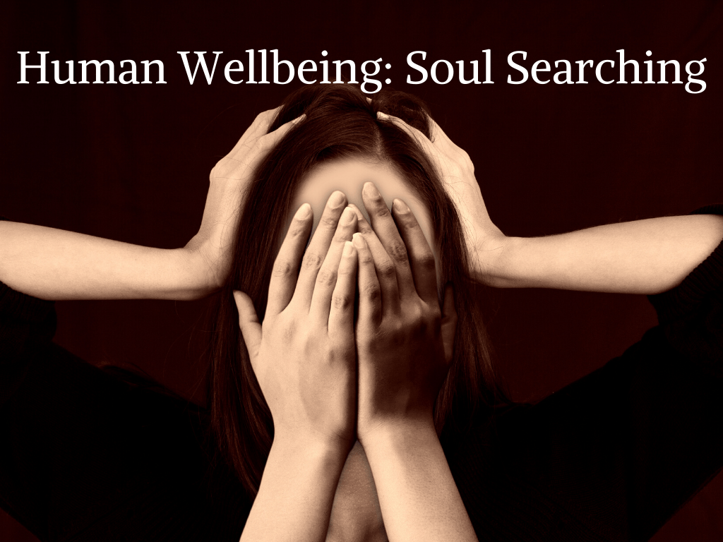 Human-Wellbeing-Soul-Searching-by-Barry-Brunswick