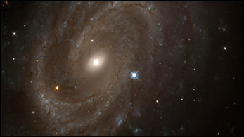 HST image of NGC4603 with supernova