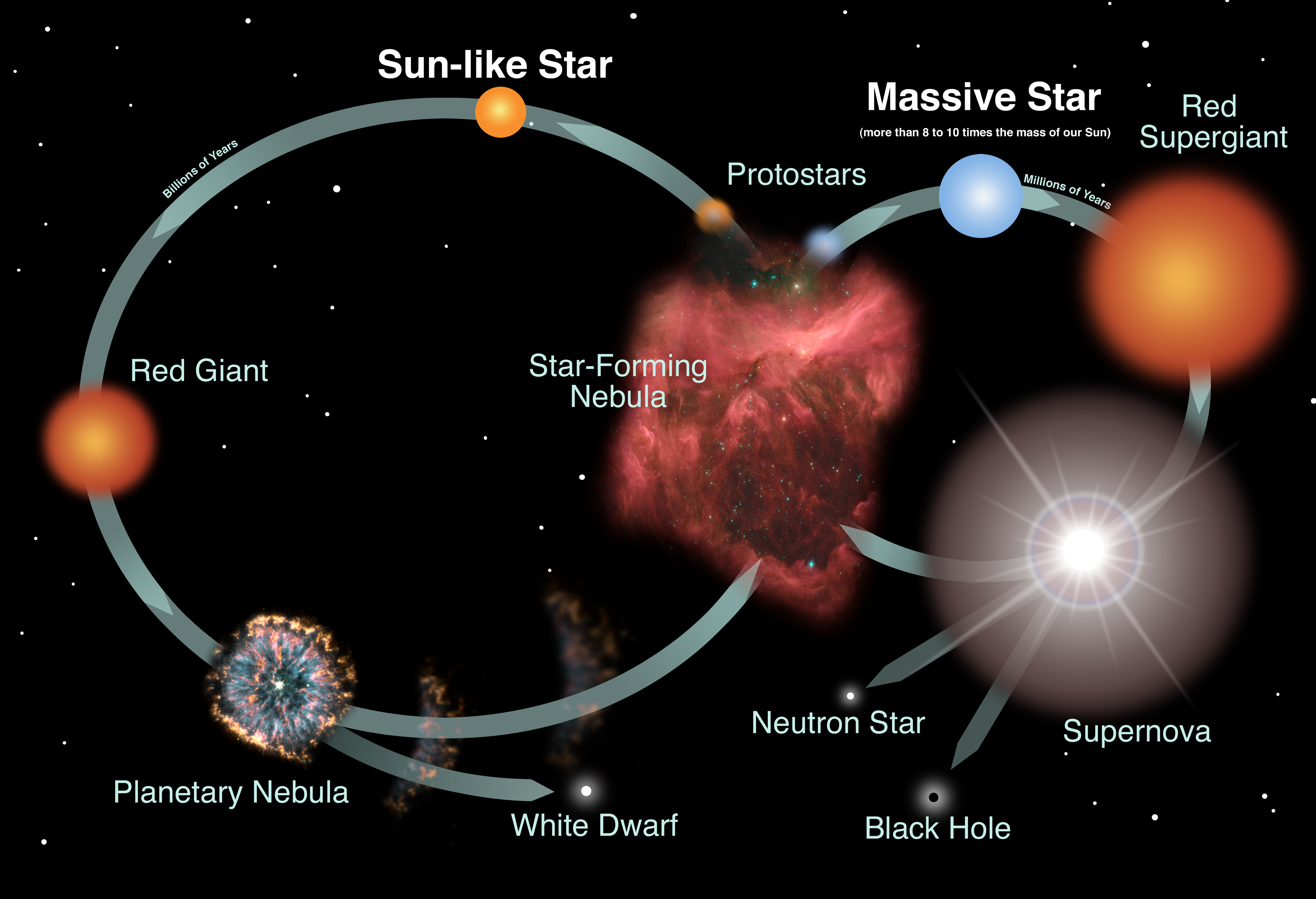diagram of a low mass star life cycle 4 pin to 7 trailer adapter wiring stars introduction the lifecycles