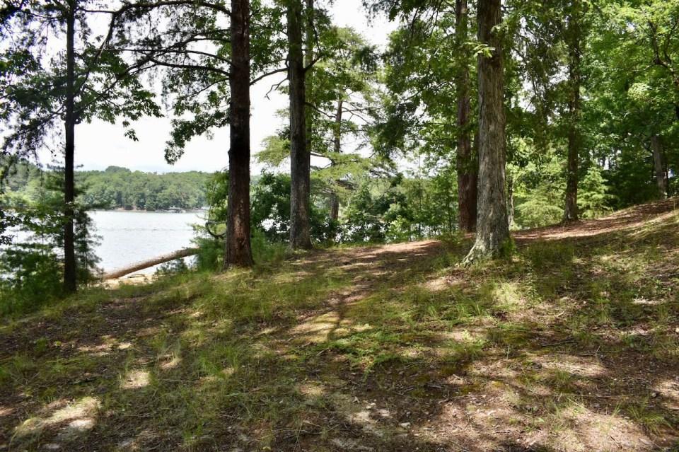 Duckett Mill Campground Site 6