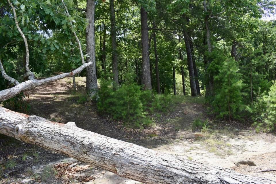 Site 6 Duckett Mill Campground