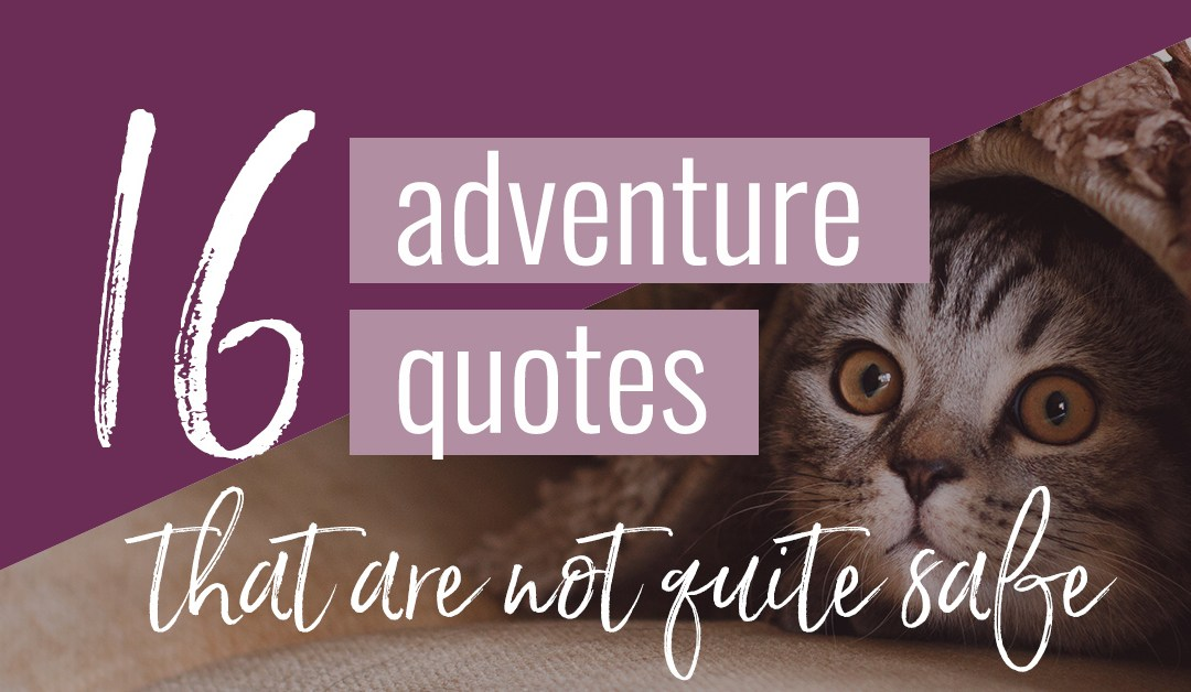 16 Adventure Quotes that are not quite safe (+ graphics to share)