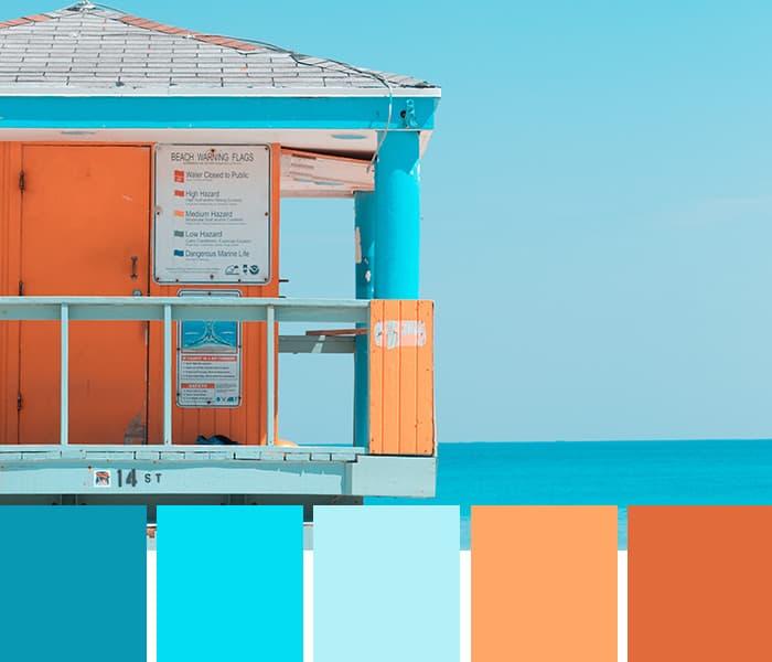 14 Tropical Color Palettes to Beat the Heat • Imagine Design