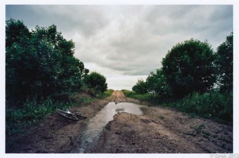 Gnat_2012film_ND_June-2