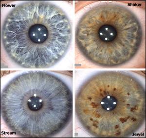 Couleurs-de-l'iris-des-yeux-imaginez-vous-conseil-en-image